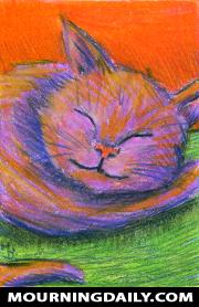 Cat Sleeping 03052018
